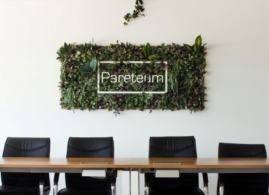 Oficinas de Pareteum en Sant Feliu de Guíxols